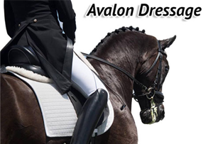 Avalon Dressage